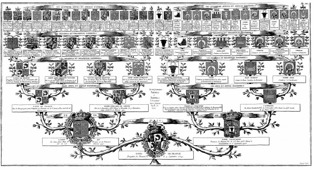 Arbre généalogique du Dauphin Louis, fils du roi Louis XV et de la reine Marie Leszczynska, et père du futur roi Louis XVI. Gravure de l'Encyclopédie de Diderot et d'Alembert